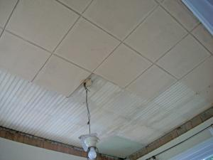 asbestos surveys will identify materials such as asbestos in ceiling tiles
